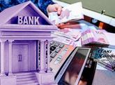 Bank sektorumuzda zəif halqalar – maliyyə sektorumuz üçün təhdid mənbəyi...